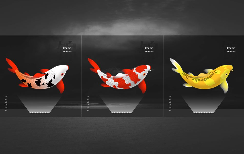 Koi.Bio Unique NFTs collectibles based on the BSC and ERC721-Polkadot.
